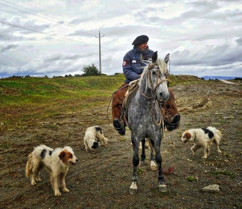 Punta Arenas6